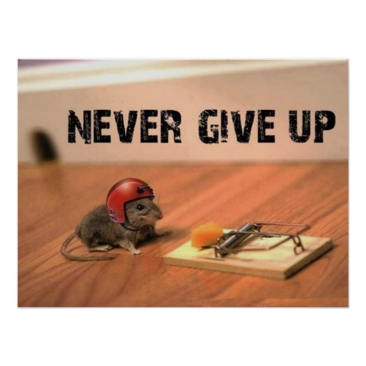 never_give_up_mouse_poster-r049060ccddb04672a32727e2e0e30f10_wa3_8byvr_512